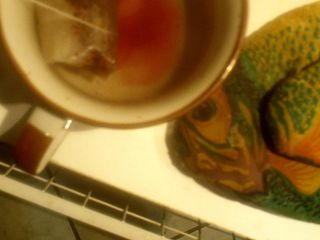 Rosehips tea